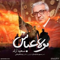 دانلود آهنگ مذهبی مولا عباس از سعید آرام