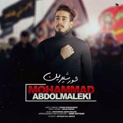 دانلود آهنگ مذهبی شور شیرین از محمد عبدالمالکی