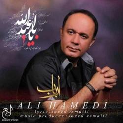 دانلود آهنگ مذهبی ارباب از علی حامدی