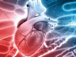 چکاپ قلب و یا چک علایم بیماری قلبی را در کجای برنامههای زندگیتان قرار دادهاید؟! | مجله سلامت و دانلود مداحی