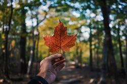تحصیل در کانادا | مجله سلامت و دانلود مداحی