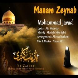 دانلود آهنگ مذهبی منم زینب از محمد جواد